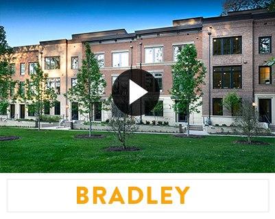 ccl-vision-bradley