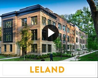 ccl-vision-leland
